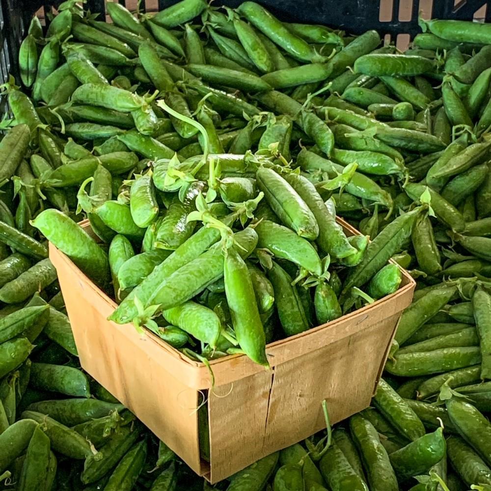 Fresh organic Peas - 1lb