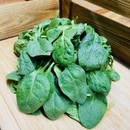 Baby Spinach (1 Packet)