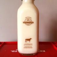 Golden Guernsey 4.8% Non-Homogenized Whole Milk