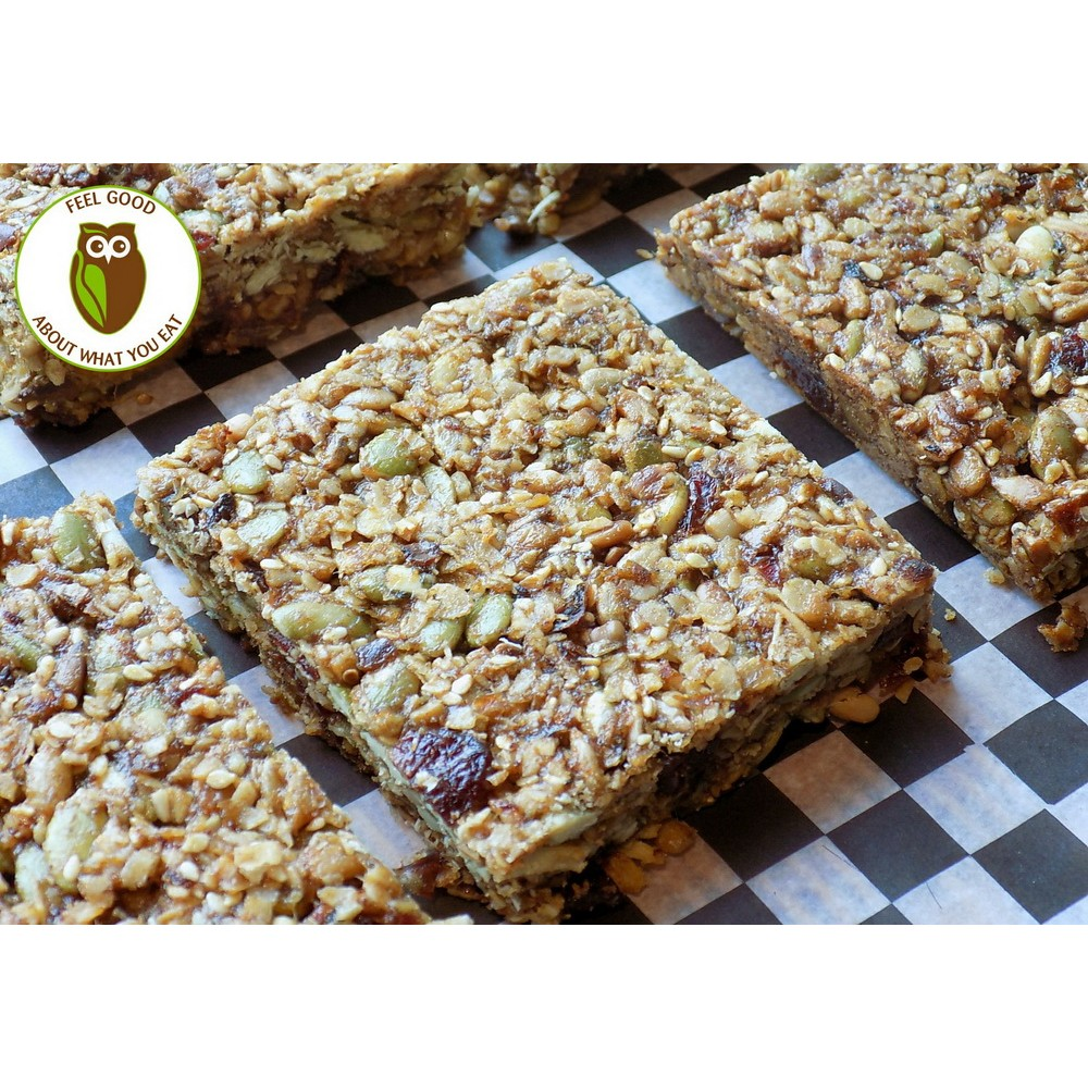 Healthy Owl Fruit & Seed Squares - WHEAT & DAIRY FREE, VEGAN - half dozen box
