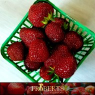 Strawberries (lb)